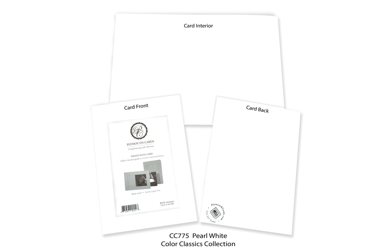 Pearl White Photo Insert Note Cards - Color Classics collection (color #CC775)