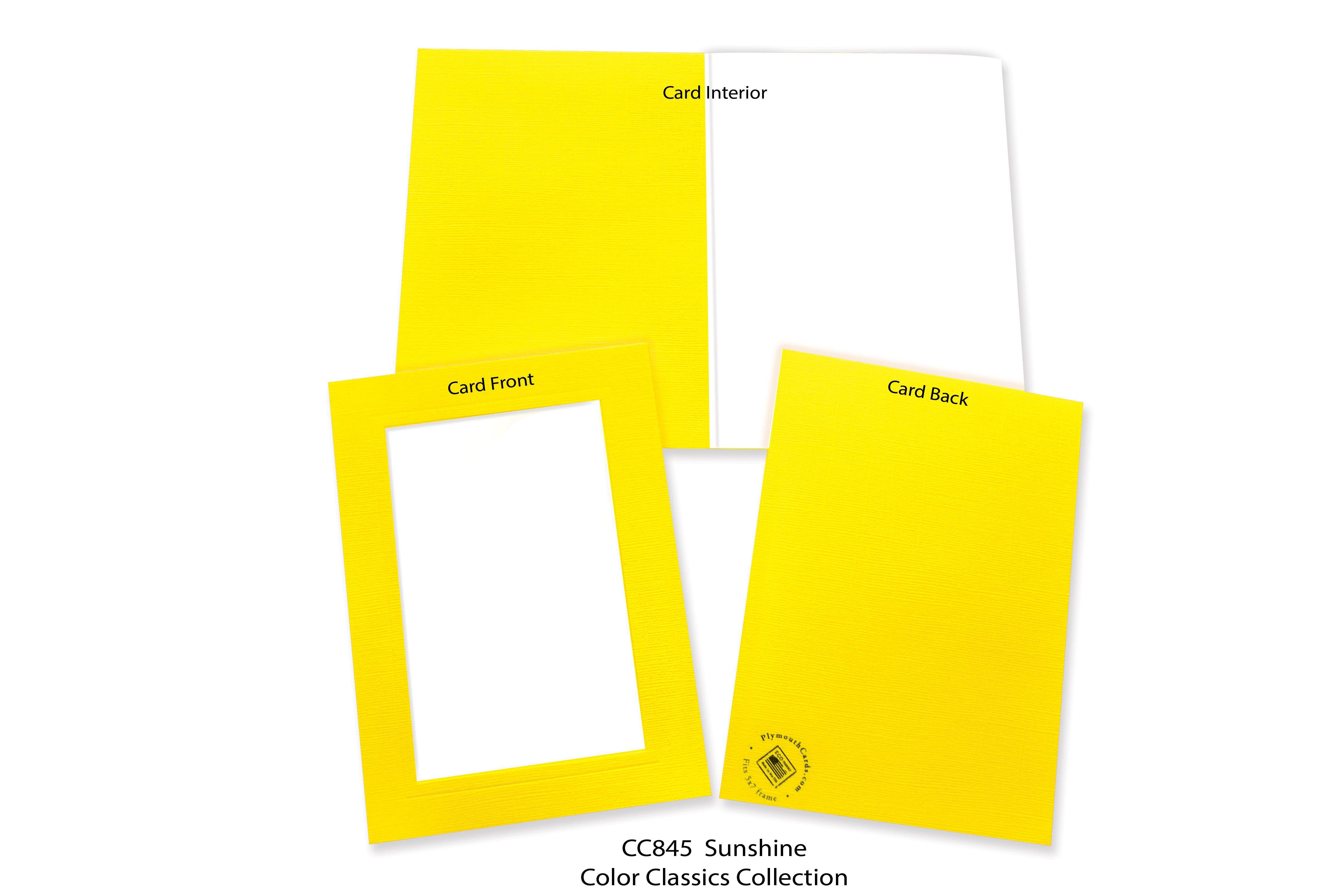 Sunshine #CC845-Photo note cards-Plymouth Cards