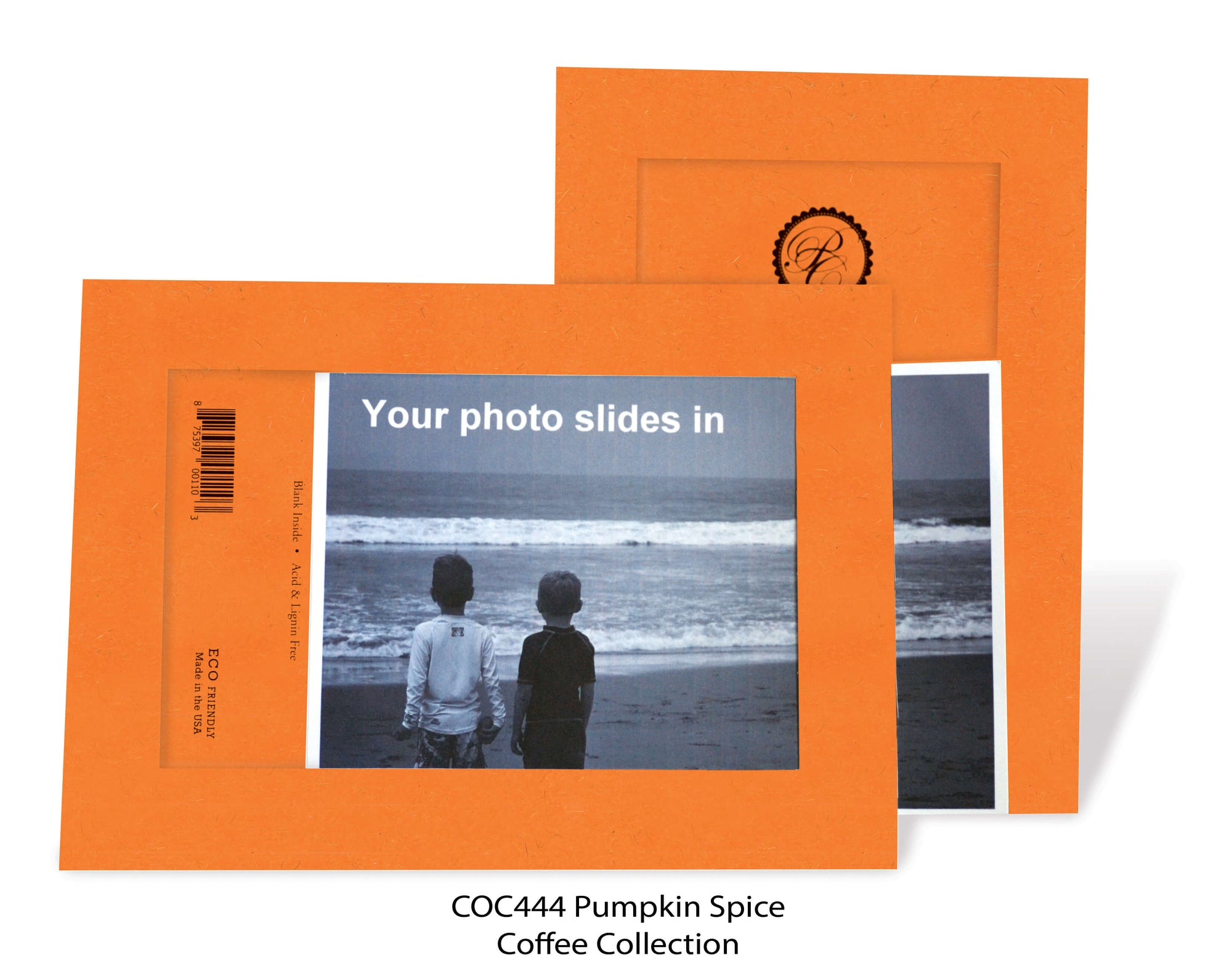Pumpkin Spice #COC444-Photo note cards-Plymouth Cards