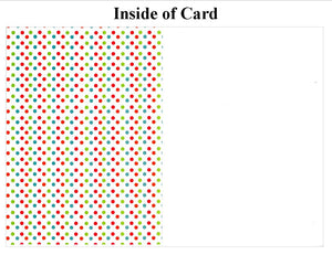 Fun Dots - traditional-Photo note cards-Plymouth Cards