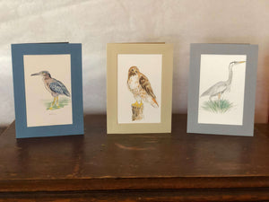 Painted Birds in Plymouth Cards