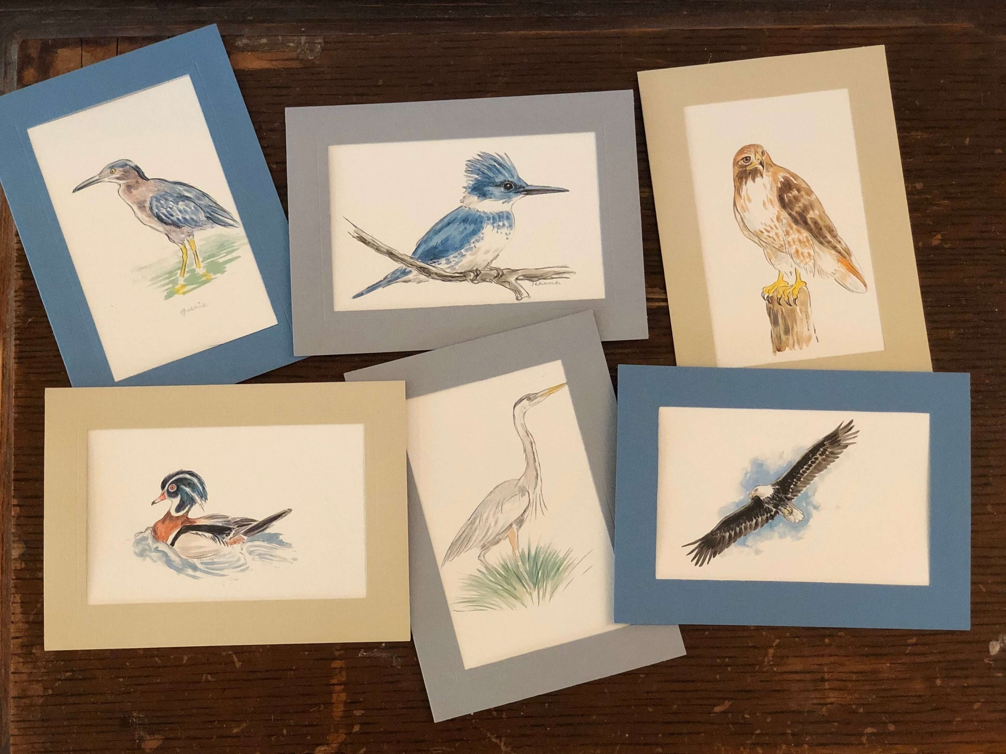 Birds - 6 pack-Greeting Card-Plymouth Cards
