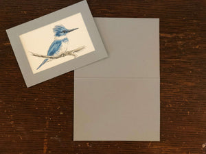 Bird in Plymouth Cards Gray
