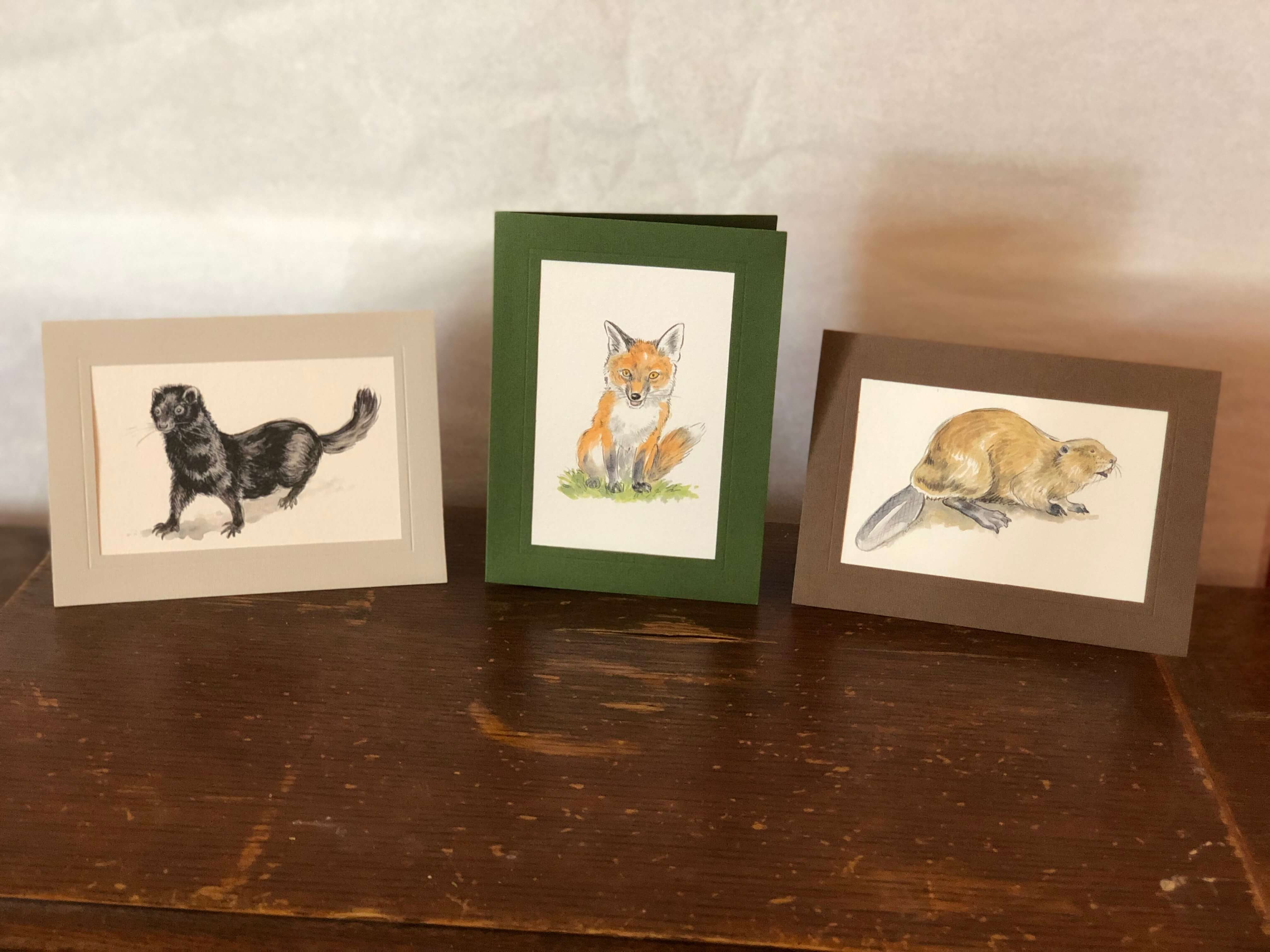 Mammals - 6 pack-Greeting Card-Plymouth Cards
