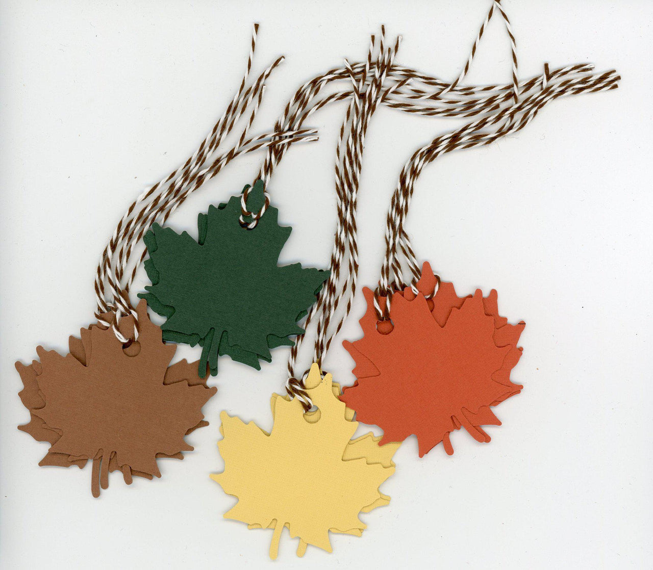 Fall leaves gift tags - 12 pack - PLYMOUTH CARD COMPANY  - 1
