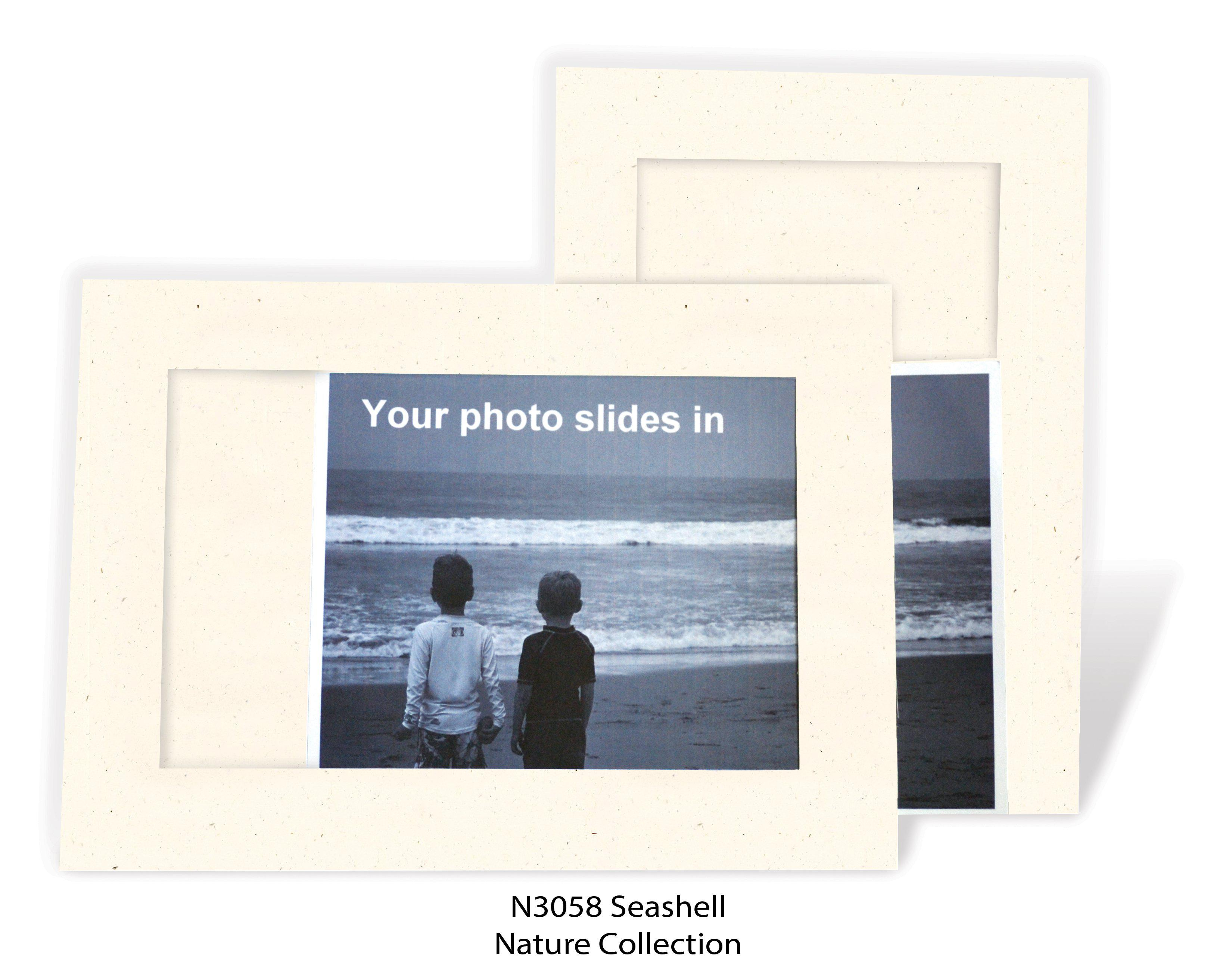 Seashell #N3058-Photo note cards-Plymouth Cards