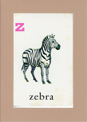 Z is for Zebra - PLYMOUTH CARD COMPANY  - 28