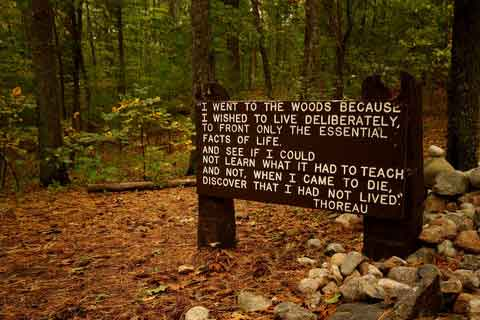 Radio Waves blog Thoreau's woods sign