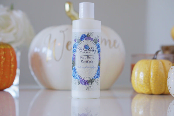 Soap Berry Co-Wash