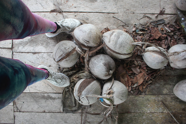 coconuts on Koh Samui, my mantra active leggings