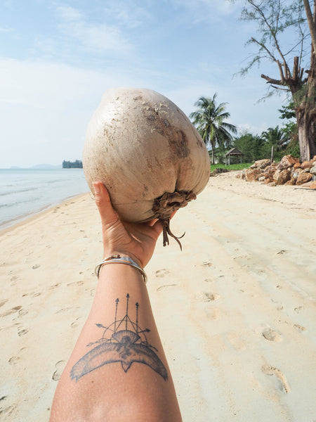 the benefits of coconuts