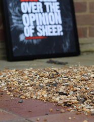 "A2 Poster - ""A Lion Does Not Lose Sleep Over The Opinion Of Sheep"" - CutAndJacked Shop  - 9"