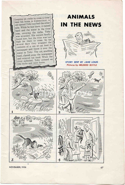 Animals in the News Jane Louis cat story 1956 old vintage comic strip illustrated cartoon page Mildred Boyle print