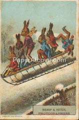 Bishop & Veitch Photographers vintage original old trade card rabbits on a sled