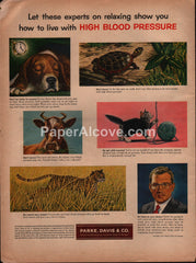 Parke Davis hypertension drug 1954 vintage original old magazine ad