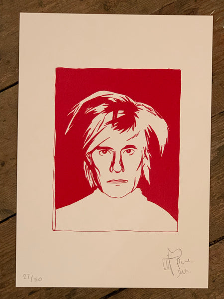 Andy Warhol Bad Hair Day Polaroid ACBF