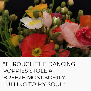 """Through the dancing poppies, stole a breeze most softly lulling to my soul"""