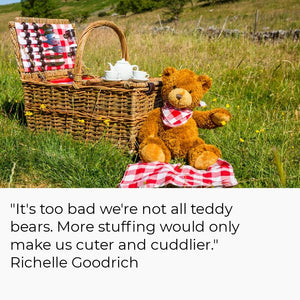 The Tale Of The Teddy Bear