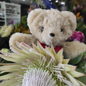 Flowers & Tambo Teddy