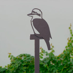 Kookaburra on Perch