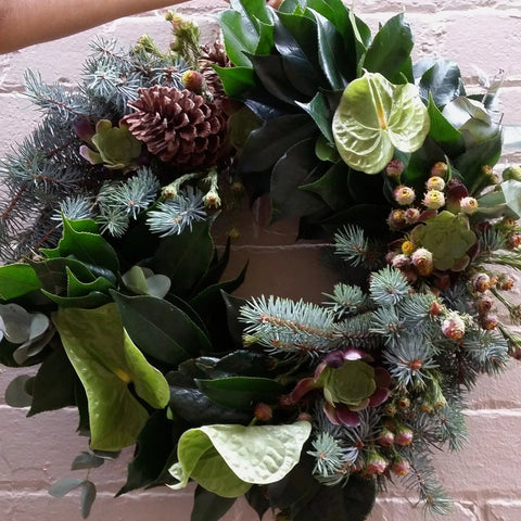Christmas Living Wreaths