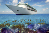 Cruise the Caribbean Reef / 100705