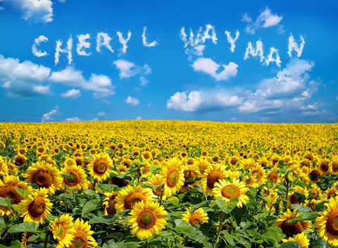 Field Of Sunflowers / 100714
