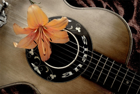 Flower On Guitar / 100638