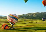 Hot Air Balloon in Field / 100776