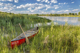 Red Canoe in a Marsh / 100774