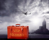 Red Vintage Suitcase With Backdrop Of City Skyline / 100532