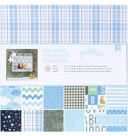 Special Delivery Boy 12 x 12 Paper Pad 12pcs