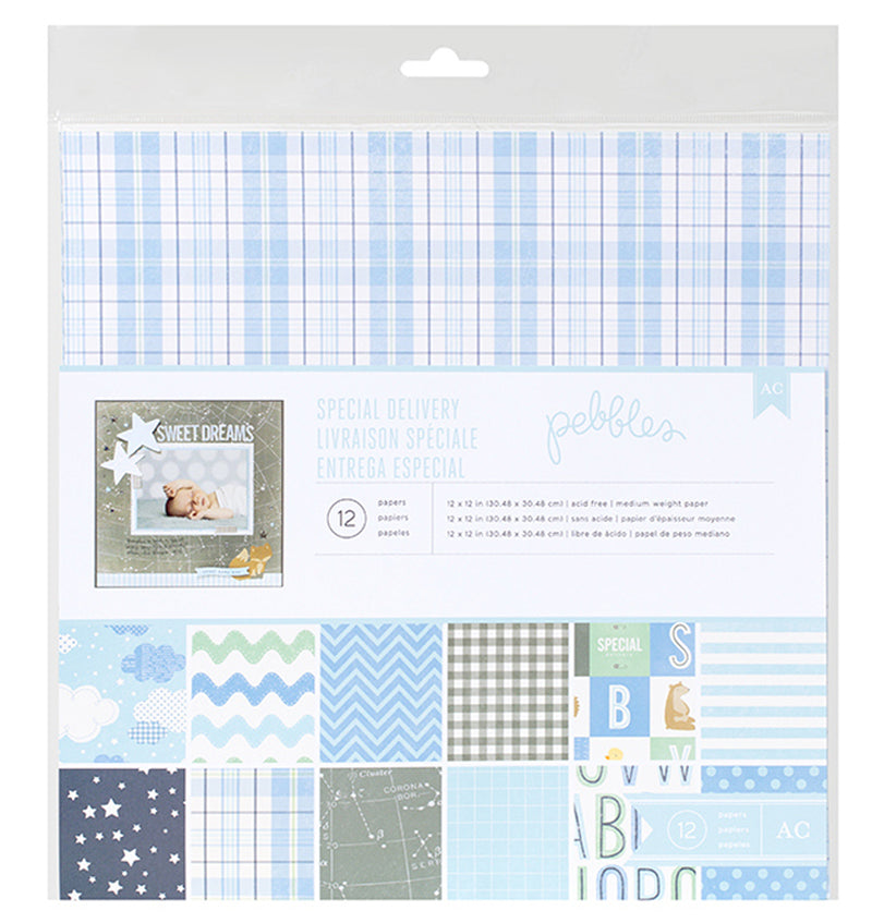 Special Delivery Boy 12 x 12 Paper Pad 12pcs Packaging