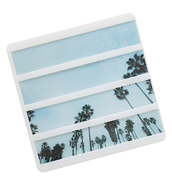 Mini Lightbox Palm Tree Background