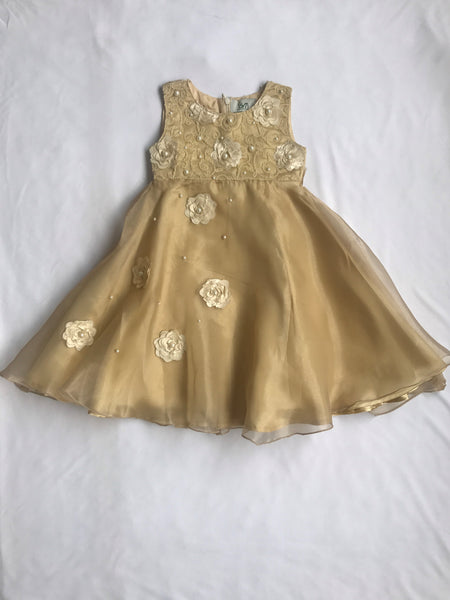 Golden dress
