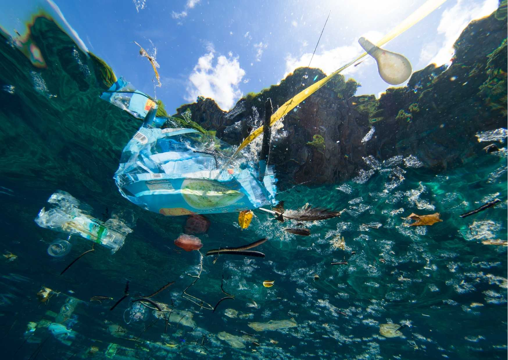 The Impact Of The Great Pacific Ocean Garbage Patch