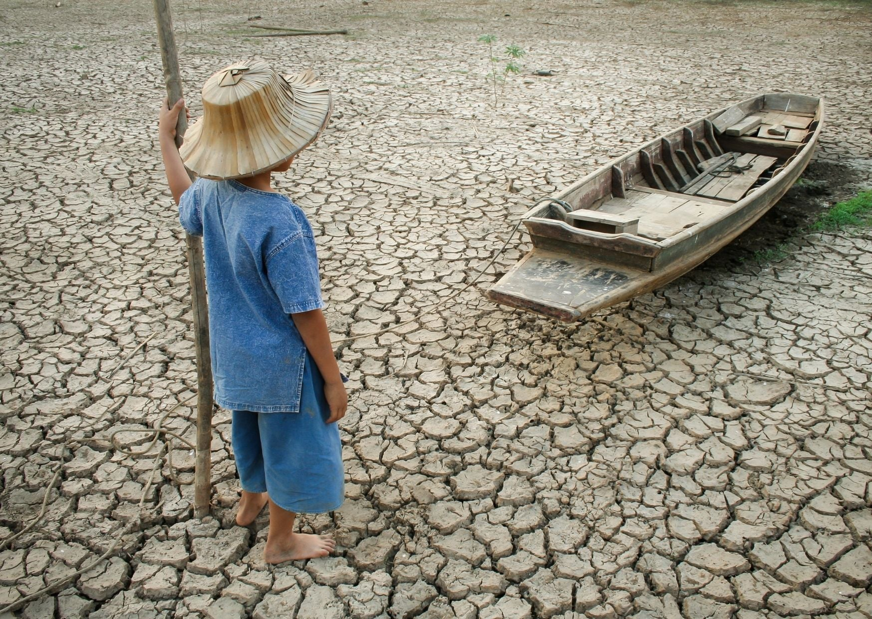 Global Warming | Personal Steps You Can Take to Fight