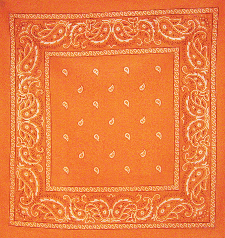 Large Orange Paisley Bandana