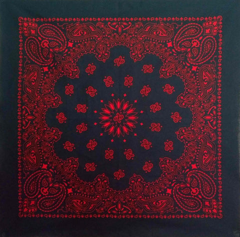 Large Red and Navy Blue Paisley Bandana