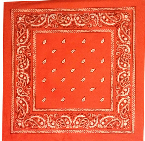 Large Vintage Red Paisley Bandana