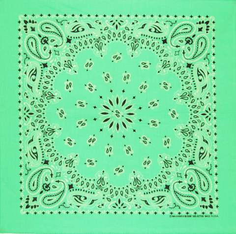 Mint Green US Paisley Bandana