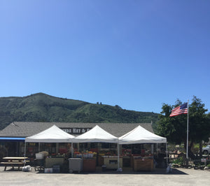 Carmel Valley Produce Stand