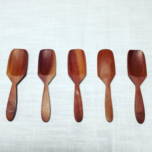 Tropical Hardwood Mini Teaspoons Set of 5.