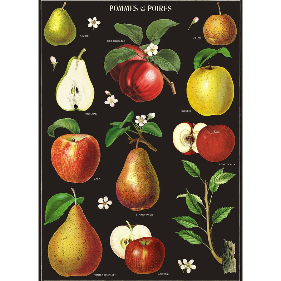 Apples and Pears Poster Wrap