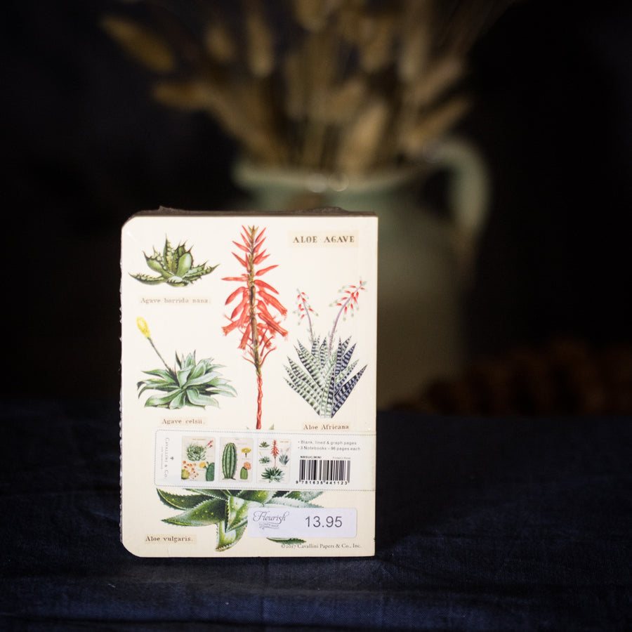"""Succulents"" mini notebook set"