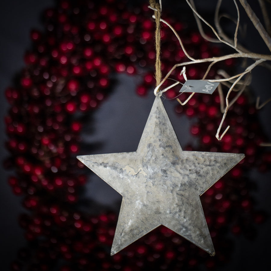 Metallic Large Star Ornament