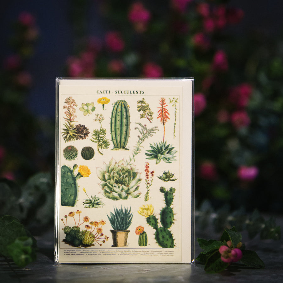 """Cacti and Succulents"" Card"