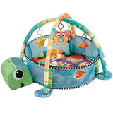 Turtle Activity Gym with Ball Pit