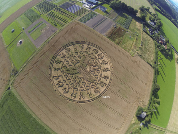 Mothership Crop Circle