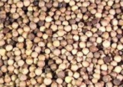 OliveNation Whole White Peppercorns 1 lb. 16 oz